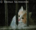 Cat behind Bars, artist: ©Thomas Silverstein